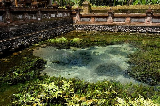The source of the spring water at Tirta Empul.        http://www.flickr.com/photos/calios/1310993517/