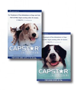 Capstar Flea Control for Dogs and Cats