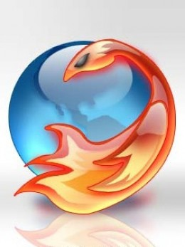 """Mozilla's Firefox"" Photo Courtesy of: stefan2904's photostream"