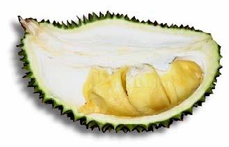 Ooi Kyau (Tumeric Durian)