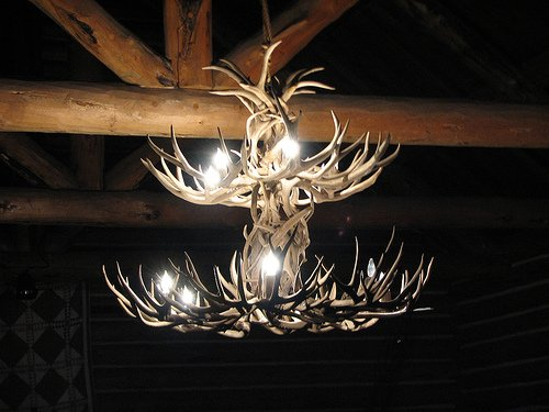 Antler Chandelier by fichdnld flickr