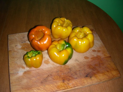 Peppers are ready to be stuffed