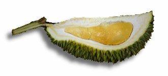 Ang Jin (Red Yoke Durian)