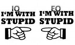 A Stupid Fool,Dumb & Smart All at the Same Time? Is There a Difference Between The Two? Yes If You're an Educated Idiot.