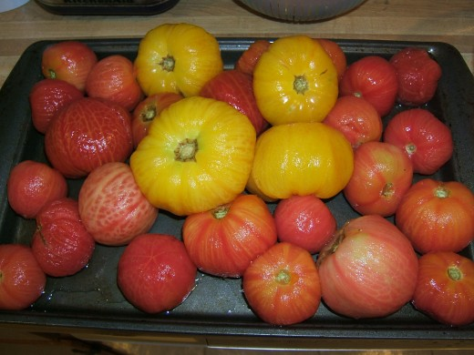Your tomatoes are ready to can