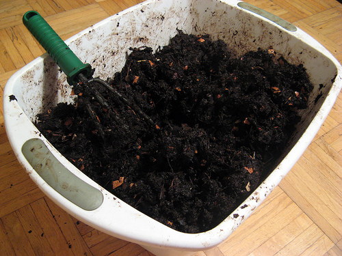 Red Worms Compost Nutrients