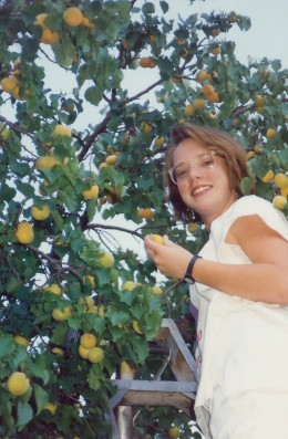 My niece picking apricots