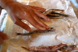 anchovies need to be filleted ..