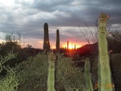 Top 10 Micro-Cities in North America - Surprise! Arizona