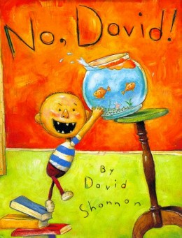 No David by David Shannon