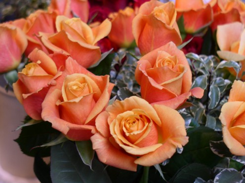 Find inexpensive fall flowers learn about cheap fall wedding flowers