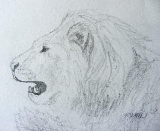 A rough sketch of another Lion, this is the kind of level you should aim to reach first!