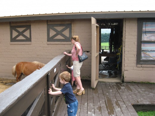 Horse Stables with paddock.