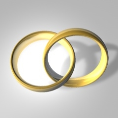 Wedding Rings Entwined: Infinity. Image Courtesy of Robo Blazek, Wikimedia. http://commons.wikimedia.org/wiki/File:WikiWed.jpg