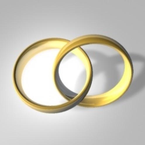Wedding Rings Entwined: Infinity. Image Courtesy of Robo Blazek, Wikimedia. http://commons.wikimedia.org/wiki/File:WikiWed.jpg