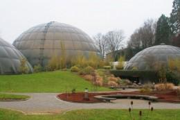 Botanical Garden -1