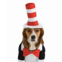 courtesy of : http://www.buycostumes.com Cat in the hat