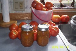 Good hot garden salsa