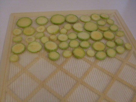 Arrange close together on trays or screens. I am using a commercial food dehydrator here, but it is possible to sun-dry squash chips in intense sun with low humidity.