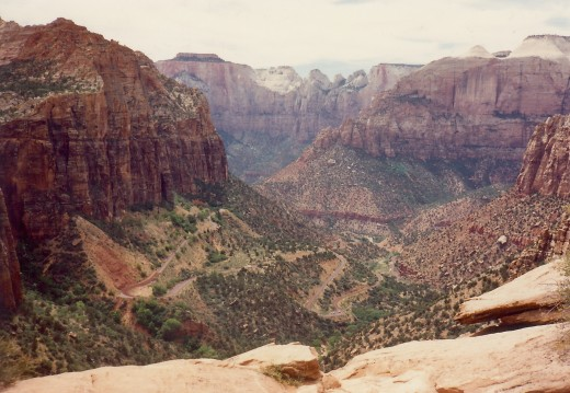 The Canyon Overlook