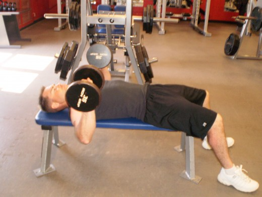 Flat Bench Dumbbell press start position
