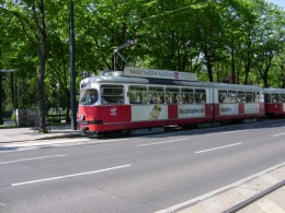 Trams in Vienna are in the national colors of red and white (unless they are covered in advertising). I recommend taking a tram around the burg ring it goes past all major buildings and museums.