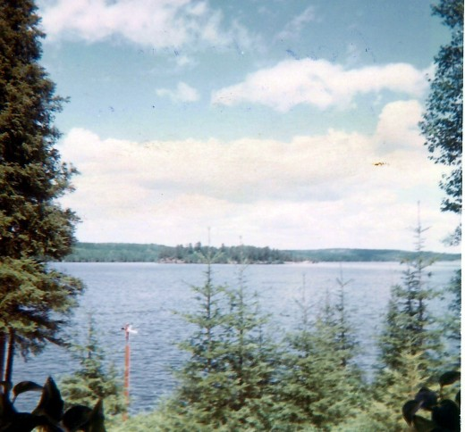 The view from the living room window of Hibbard's cabin overlooking the Moose Lake.