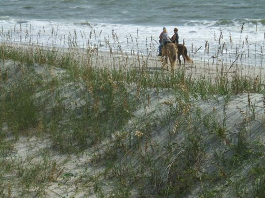 Ride horses on your Amelia Island vacation.