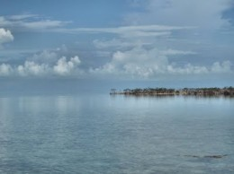 A Small Cay Out In The Distance In The Mangroves
