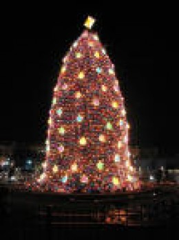 Here is the National Christmas tree. It is decorated entirely in LED Christmas lights.