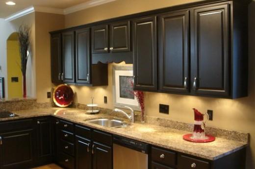 DIY Black Kitchen Cabinets tPswTNrB