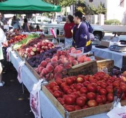 Central California Abundance...
