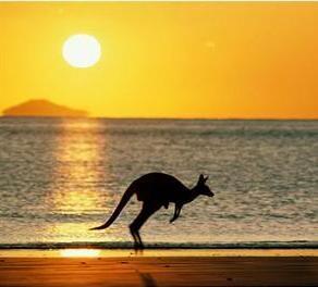 The kangaroo making his leap of faith hehehe... amid beautesque sunset.