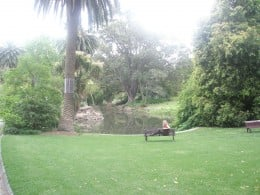 Enjoying the warm sunshine in the central Melbourne's park