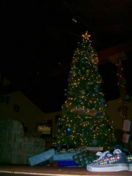 My Christmas tree last year 2008