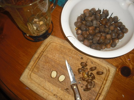shelling the acorns