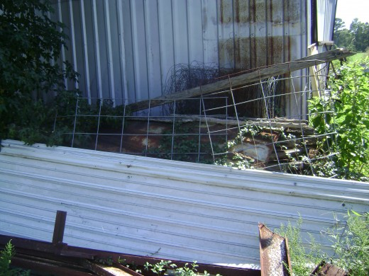 ABOVE:the steamlined corrugated metal fence.  BELOW:the landscaping to the shop/barn entry.