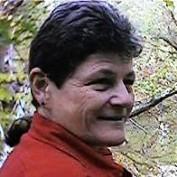 silvatungfox profile image
