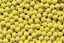 Tennis Balls are a big disposal problem