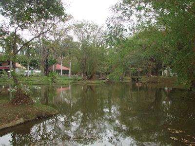 Surrounded by trees and lakes Cinnamon Lodge is nature lovers delight