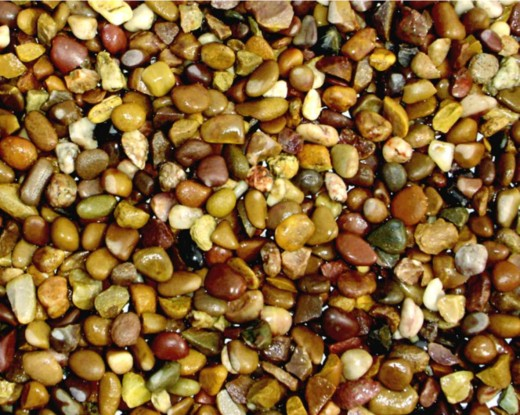Pea gravel makes an excellent flooring material for greenhouses.