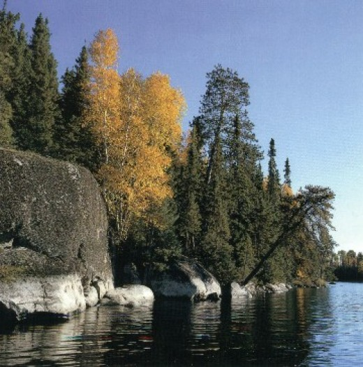 BWCAW picture