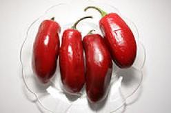 Red Jalapeno Chili