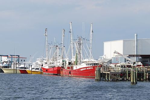 "Shrimp boats, a major character in ""Forrest Gump"" (public domain)."
