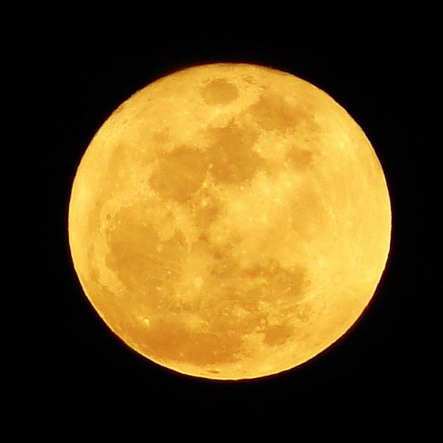 Watch out it's a full moon!