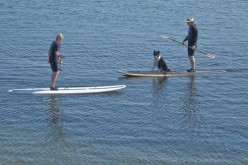 Stand Up Paddle Boarding - Hottest Board Sport