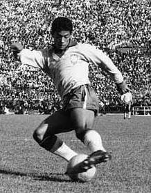 Man Garrincha