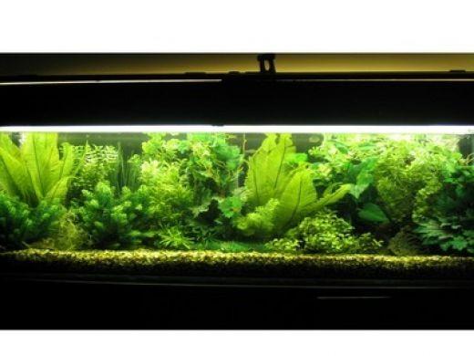 Fake aquarium plants for Fake artificial aquarium fish tank