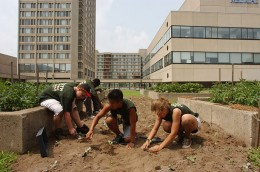 7. Greig Cranna / The Food Project/Farming on the Roof  The nonprofit Food Project works to achieve both social and agricultural change by bringing together kids from diverse backgrounds to farm several lots in urban Boston.