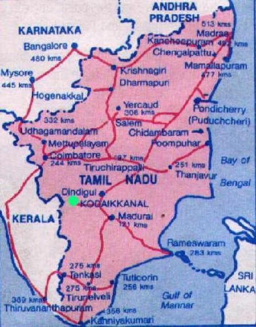 Map of Tamil Nadu-pink color